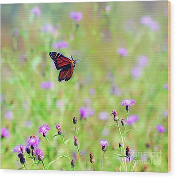 Wood Print featuring the photograph Monarch Butterfly In Flight Over The Wildflowers by Kerri Farley