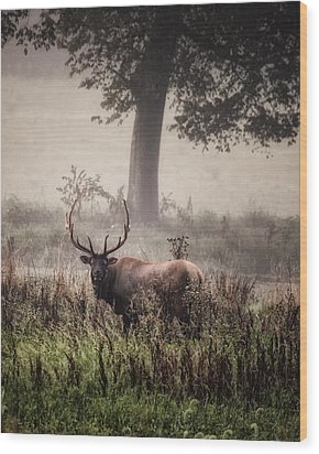 Wood Print featuring the photograph Monarch In The Mist by Michael Dougherty