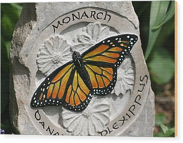 Monarch Wood Print by Ken Hall