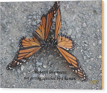 Monarch Love Means Not Getting Squished  Wood Print