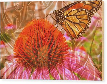 Monarch Mirage Wood Print