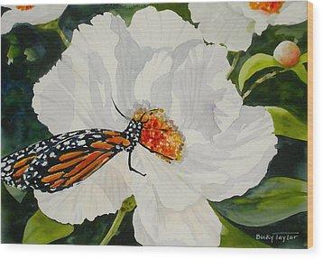 Monarch On A Poppy Wood Print
