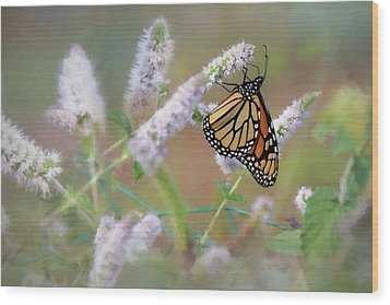 Wood Print featuring the photograph Monarch On Mint 2 by Lori Deiter