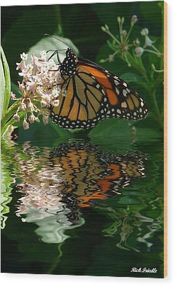 Wood Print featuring the photograph Monarch Reflection by Rick Friedle