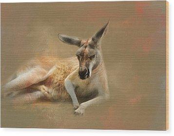 Monday Morning Drowsies Kangaroo Art Wood Print by Jai Johnson
