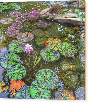 Wood Print featuring the photograph Monet's Pond At The Fair by Jame Hayes