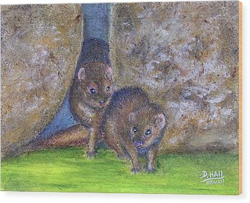 Mongoose #511 Wood Print by Donald k Hall