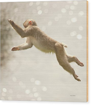 Wood Print featuring the photograph Monkey Jump by Roy  McPeak