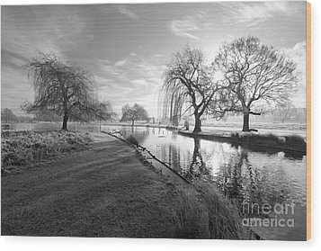 Mono Bushy Park Uk Wood Print