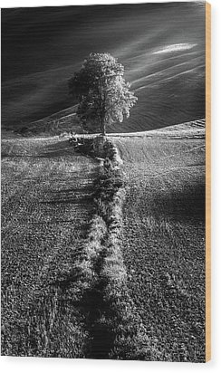 Monochrome Valley Wood Print