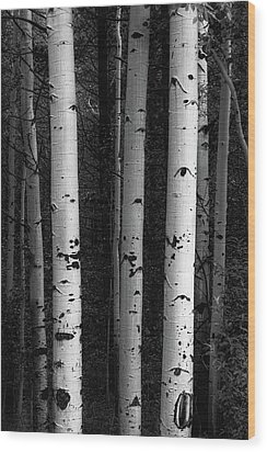 Wood Print featuring the photograph Monochrome Wilderness Wonders by James BO Insogna