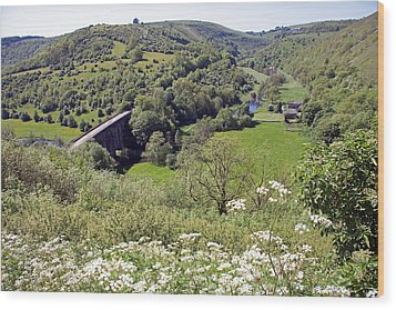 Monsal Head Wood Print