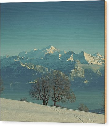 Mont Blanc Wood Print by Lionel Albino