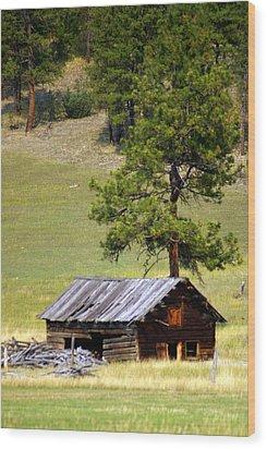 Montana Ranch 2 Wood Print by Marty Koch
