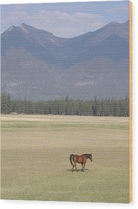 Montana Ranch Wood Print by Lisa Patti Konkol