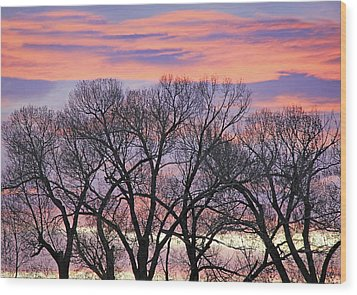 Wood Print featuring the photograph Montana Sunrise Tree Silhouette by Jennie Marie Schell