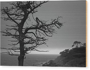 Monterey Penninsula I Bw Wood Print by David Gordon