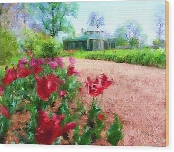 Monticello Wood Print by Cindy Wright