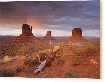 Monument Valley Rainbow Wood Print by Eric Foltz