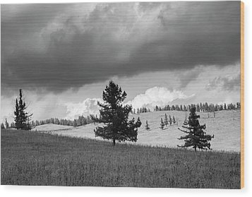 Moody Meadow, Tsenkher, 2016 Wood Print