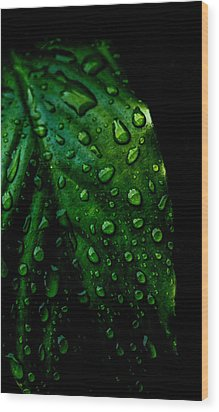 Moody Raindrops Wood Print