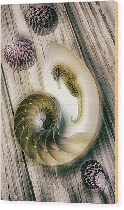 Moody Seahorse Wood Print