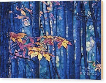 Wood Print featuring the photograph Moody Woods by Aimelle