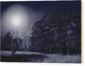 Moon And Dreams Wood Print by Nina Fosdick