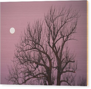Moon And Tree Wood Print by Sumoflam Photography