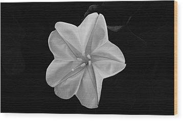 Moon Flower Wood Print