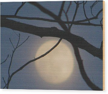 Moon Glow Wood Print by Lindie Racz