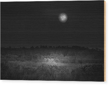 Moon Glow Wood Print by Mark Andrew Thomas