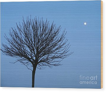 Moon Rise Wood Print by Michael Canning