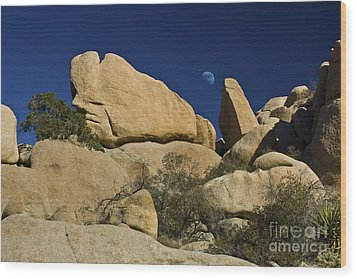 Moon Rising Over Indian Rock Wood Print