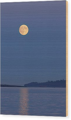Moonlight - 365-224 Wood Print by Inge Riis McDonald