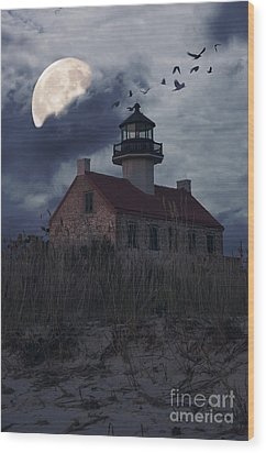 Moonlight At East Point Wood Print