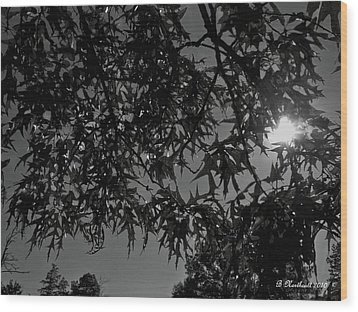 Wood Print featuring the photograph Moonlight by Betty Northcutt