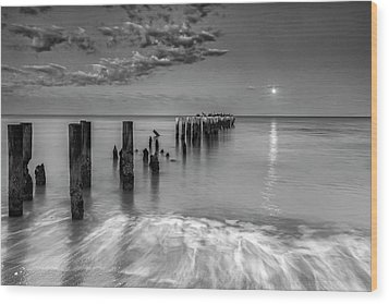 Wood Print featuring the photograph Moonlight Serenade by Mike Lang