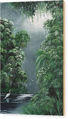 Moonlight  Swamp Wood Print by Darlene Green