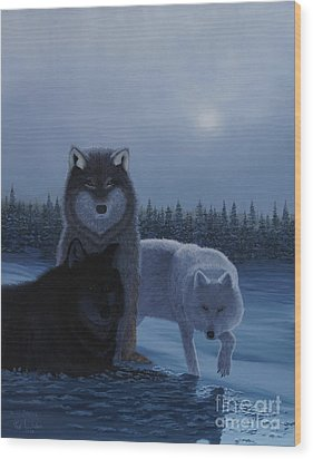 Moonlight Wolves Wood Print by Stanza Widen