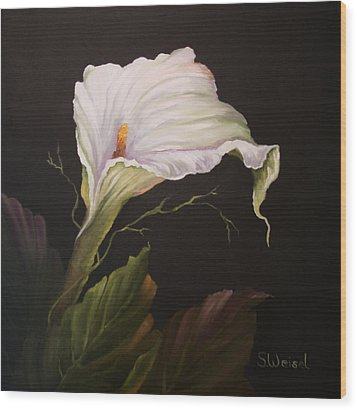 Moonlit Calla Lily Wood Print by Sherry Winkler