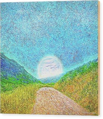 Wood Print featuring the digital art Moonlit Path - Marin California Trail by Joel Bruce Wallach