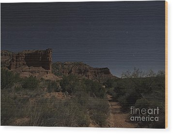 Wood Print featuring the photograph Moonlit Path by Melany Sarafis