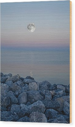 Moonlit Twilight Wood Print by Shelly Stallings