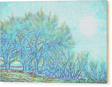 Wood Print featuring the digital art Moonlit Winter Trees In Blue - Boulder County Colorado by Joel Bruce Wallach