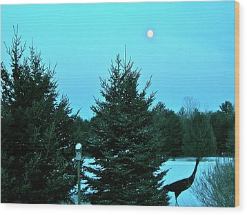 Wood Print featuring the photograph Moony Blue by Randy Rosenberger
