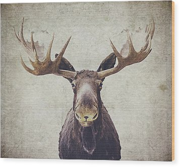 Moose Wood Print by Nastasia Cook