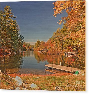Moose Pond Wood Print