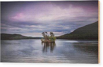 Moose Pond Maine Wood Print