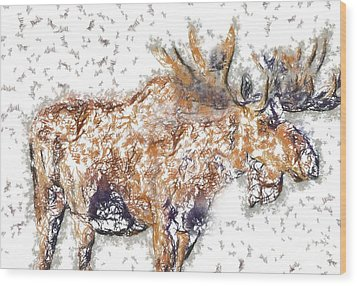 Moose-sticks Wood Print by Elaine Ossipov
